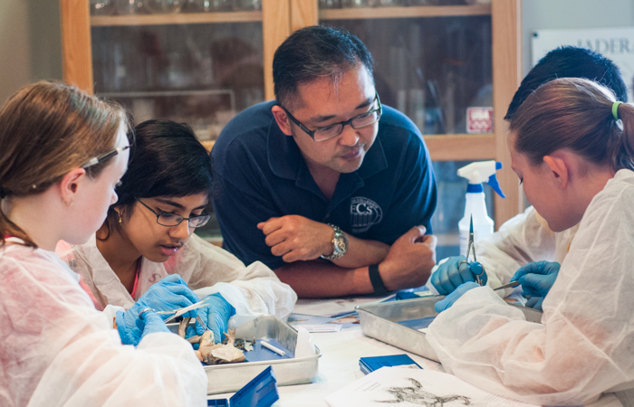 Instructor Steve Pak oversees dissection, guiding and quizzing students as they go along.